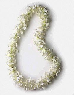 Wholesale hawaiian leis 1 808 732 7385 hawaiian luau supplier 50 and up mightylinksfo